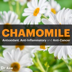 Chamomile benefits - Dr. Axe