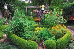 92 best edible landscaping images on pinterest growing vegetables