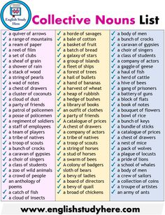 Detailed Collective Nouns List in English English Grammar Rules, Teaching English Grammar, English Writing Skills, English Vocabulary Words, Learn English Words, English Phrases, English Language Learning, English Study, English Lessons