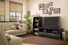 Living Room Tv Console Stand Ideas Pictures Home Design Visi Build