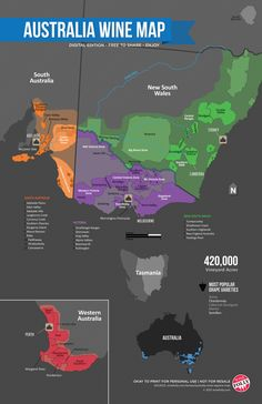 Australia's Wine Region (Map Australia Wine Map by Wine Folly Whisky, Wine Folly, Chateauneuf Du Pape, Wine Education, Wine Guide, In Vino Veritas, Wine And Beer, Wine And Spirits, Wine Making