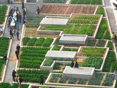 Value Farm. Location: Shekou, Nanshan, Shenzhen, Guangdong, China; firm: Thomas Chung; year: 2013