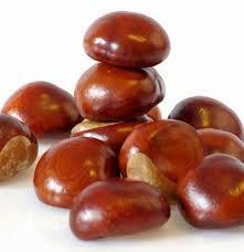 The horse chestnut has been used as a traditional remedy for arthritis, rheumatism and the management of varicose and hemorrhoids.