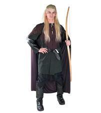 fancy Adult dress costumes action
