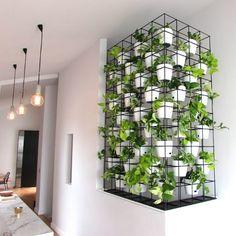 Bonito jardín vertical
