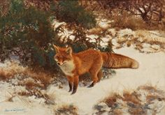 Bruno Liljefors (1860-1939) - A Fox in winter landscape, 1911