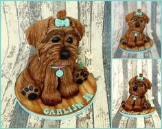 I made this for a girl that wanted a dog for her birthday. Her mum said that was not going to happen. She could only have a cake dog! Now the question is will she let her visitors cut into her much wanted pet! When she first saw the cake she...
