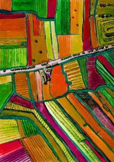 Stereotype beeld dat buitenlanders van Nederland hebben.  Tulip Farms birdseye , Holland