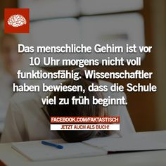 Wusst ich's doch! I Need To Know, The More You Know, Things To Know, Things To Think About, True Facts, Funny Facts, Funny Quotes, Funny As Hell, Amai