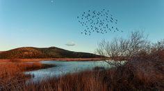 Schoinias lake by Ilias Agiostratitis on 500px