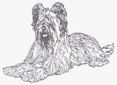 Dog Rubber Stamp - Briard-1E (Size,$9.95