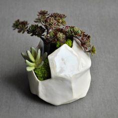 geometric planter ceramic succulent container garden