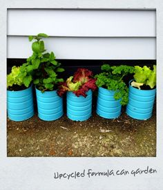 Upcycled baby formula cans - Punch small drainage holes in the bottom (I used a hammer & nail) - Paint both outside and inside of can to help stop it rusting (I used 2 coats of spray paint) - Plant your veges, herbs, flowers and enjoy!