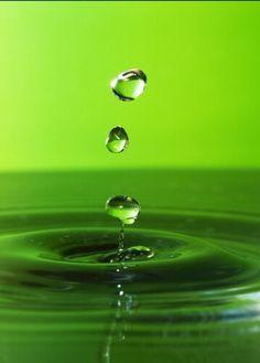 green.quenalbertini: Green bubbles