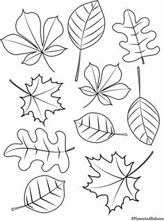 Fall Leaves Coloring Pages Printable . 24 Fall Leaves Coloring Pages Printable . 423 Free Autumn and Fall Coloring Pages You Can Print Fall Leaves Coloring Pages, Fall Coloring Sheets, Leaf Coloring Page, Pumpkin Coloring Pages, Coloring Pages To Print, Free Printable Coloring Pages, Free Coloring, Coloring Books, Free Printables
