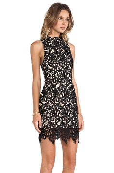 Cameo Fallen Love Dress in Black | REVOLVE