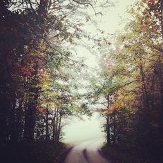 {autumn misty morning} photo by hannahqueen - love this
