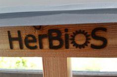 backoffice&more - Projekte - Nahversorgung Region Elsbeere Wienerwald - vertical gardening Gardening, Home Decor, Projects, Decoration Home, Room Decor, Lawn And Garden, Home Interior Design, Home Decoration, Horticulture