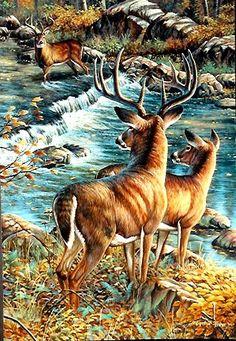 """""""Deer Creek Crossing"""" by Cynthie Fisher ~ North American Big Game whitetail deer"""