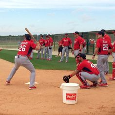 Now batting for the #STLCards, manager Mike Matheny. #SpringTraining