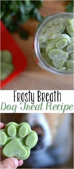 Breath Dog Treats A frozen dog treat with coconut oil and herbs to improve you dog's breath!A frozen dog treat with coconut oil and herbs to improve you dog's breath! Puppy Treats, Diy Dog Treats, Dog Treat Recipes, Healthy Dog Treats, Dog Food Recipes, Frozen Dog Treats, Healthy Pets, Doggy Treats Recipe, Homemade Cat Treats