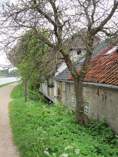 Madelief: Holland, Vlaardingen