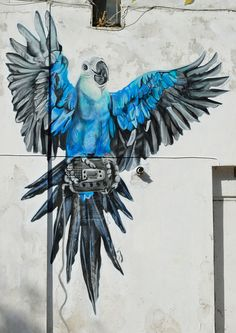 cally parrot light blue by Louis Masai Michel