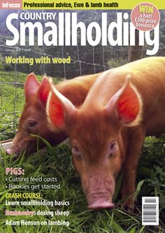 Birthday Gift Ideas For Boyfriend: Exciting Personalized Gifts For Him Farm Animals, Animals And Pets, Wood Pig, Animal Magazines, Country Hats, Personalised Gifts For Him, Farming, Homestead, Your Dog