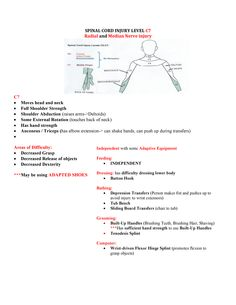 SPINAL CORD INJURY LEVEL C7 Spinal Cord Injury Levels, Spinal Cord Injury Treatment, Peripheral Nerve Injury, Occupational Therapy Assistant, Occupational Therapy Activities, Hand Therapy, Physical Therapy, Nbcot Exam Prep, Median Nerve