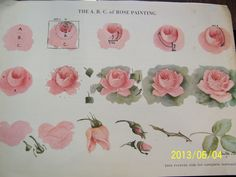 CHINA PAINTING STUDY ABC ROSE STUDY DOROTHY PARK STEP BY STEP 3 PAGE