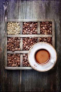 Learn to choose the right coffee blends.