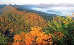Blue Ridge Autumn Adventures with a Splash of Seasonal Color