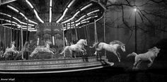 Escape - In the novel Celia has a carousel, but she turns the animals into live animals so they can move around the circus. This symbolizes escape from being in a continuous path that was meant to be for someone
