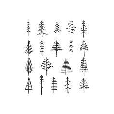 Pine Tattoo, Kritzelei Tattoo, Tattoo Tree, Mini Drawings, Small Drawings, Doodle Drawings, Tattoo Drawings, Tree Drawings, Tattoo Illustrations