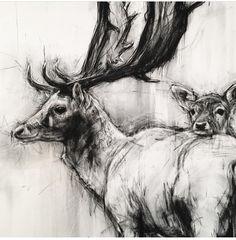 Animal Sketches, Animal Drawings, Art Drawings, Line Drawing, Drawing Sketches, Painting & Drawing, Charcoal Art, Charcoal Drawings, Arte Grunge