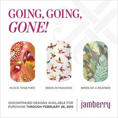 """Discontinued wraps available for purchase through February 28, 2015!! """"Flock Together"""" """"Birds In Paradise"""" """"Birds Of A Feather"""""""