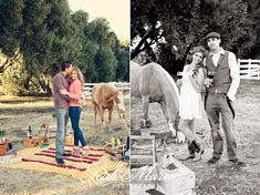horses styled shoot - Google Search