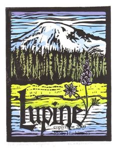 Lupine and Mt. Rainier