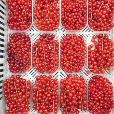 Mimi Ikonn Food, Mimi Ikonn Healthy, Red Currants, Organic, Summer Berries Mimi Ikonn, Plant Based Nutrition, Summer Berries, Green Garden, Food Photography, Organic, Healthy Recipes, Red Currants, Eat