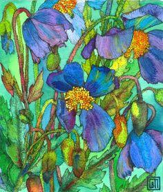 Blue Poppies 2. Art by Sofía Perina Miller