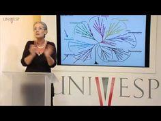 Biologia Geral - Aula 11 - Evolução dos eucariontes amebozoa e rizharia - YouTube