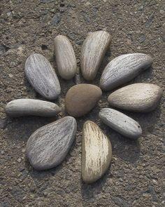 Steinblume für den selbstgemachten Beet-Tritt