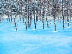 The Japanese island of Hokkaido is a poster child for untouched geological beauties (think volcanoes, national parks, and lakes), most of which become even more stunning come wintertime. One notable example is the ethereal Blue Pond, whose protruding trees and azure waters pull off layers of ice quite exquisitely.