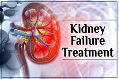 A patient needs to get the right kidney failure treatment for both of these dangerous stages of health. But the question arises whether it is possible to cure damaged kidneys naturally. Well, the answer is yes. What Causes Kidney Failure, Kidney Failure Treatment, Ayurvedic Doctor, Lower Abdomen, Kidney Health, Chronic Kidney Disease, Learn Yoga, Dialysis