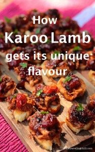 How Karoo Lamb gets its unique flavour #southafrica #food #foodie