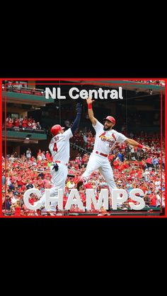 St Louis Baseball, St Louis Cardinals Baseball, Stl Cardinals, Cardinals Players, Kayaking, Canoeing, America's Pastime, The St, World Championship