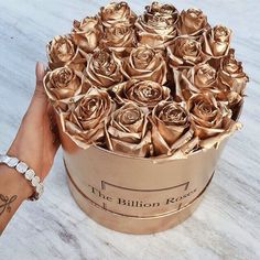 gold roses   girly goal