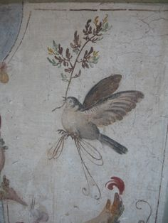 -- Roman Fresco -- Excavated from the 'Villa D'Este' at Pompeii.----- This is a really beautiful painting of a bird that is on a wall. The bird is so realistic, it really nice types of shade that they used to paint with. Ancient Rome, Ancient History, Roman History, Art History, Art Romain, Pompeii And Herculaneum, Art Antique, Roman Art, Tempera