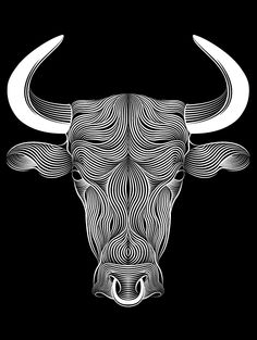 BULL by Patrick Seymour, via Behance