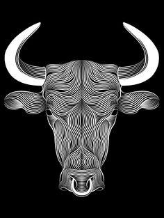 BULL by Patrick Seymour, via Behance